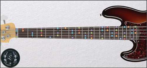 Bass Fretboard Map by Lindale-FF