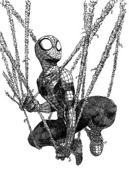 Spiderman by Zinfer