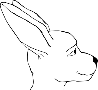 Roo by TermsOfService