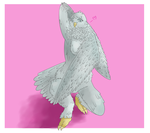 Birdy by cococolors