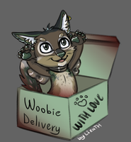 Woobie delivery by lizathehedgehog