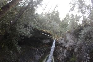 winter forest stock water fall sky trees cliff by UnseenIvy
