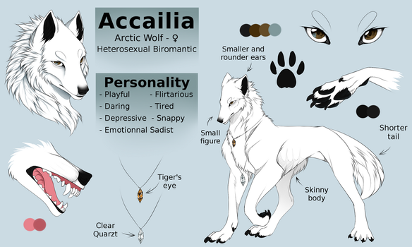 .:Commission:. Accailia reference sheet by Arankay