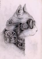 Steampunk cat by hellencher