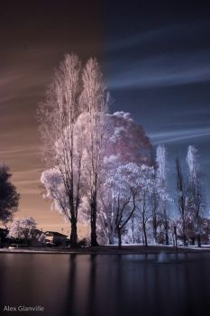 InfraRed Photography Action by comicidiot
