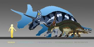 Ceratopsian Scale by Spikeheila