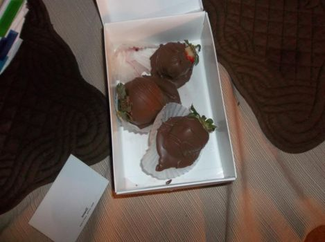 Chocolate-Covered Strawberries by EvanescenceHakuFan16