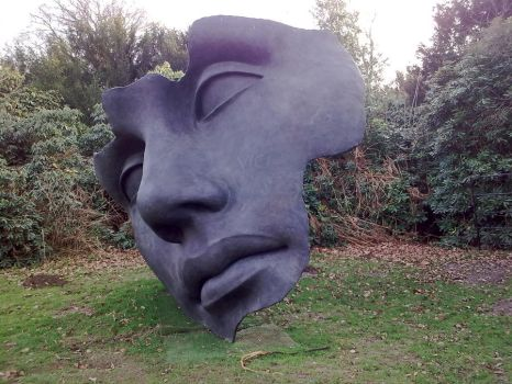 Face by deluded