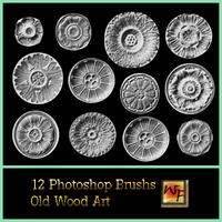 12 Round Old Wood Art Brushs by WebFoot