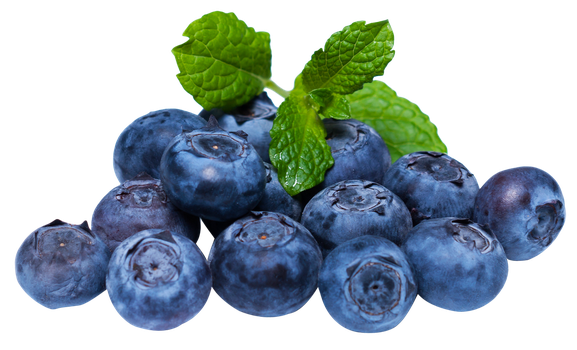 FIRST PICTURE OF BLUEBERRIES THAT'S NOT INFLATION by Green-Rabb1t