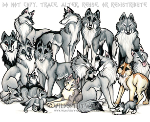 WeuUkoo Clan Wolf Pack Commish by WildSpiritWolf