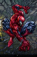 Amazing Spiderman color_ver by aladecuervo