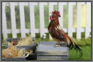 A Little Crowing by Teensyweensybaby