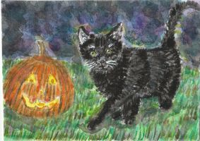 Black cat  Halloween  pumkin  watercolor  aceo by tulipteardrops
