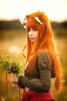 Horo in Field #1 by andrewhitc