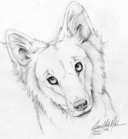 Portrait of Yote by Yote