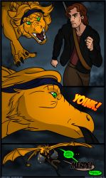 The Realm of Kaerwyn Issue 8 Page 28 by JakkalWolf