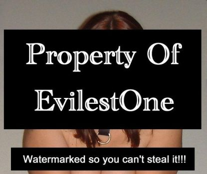 Watermark for your protection by EvilestOne