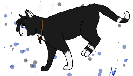 Ravenwing +Gift+ by Warrior-Cats-Girl14