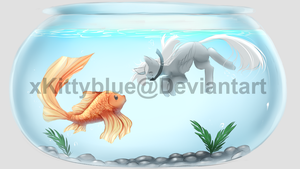 Swimming with a Fish | CLOSED by xKittyblue