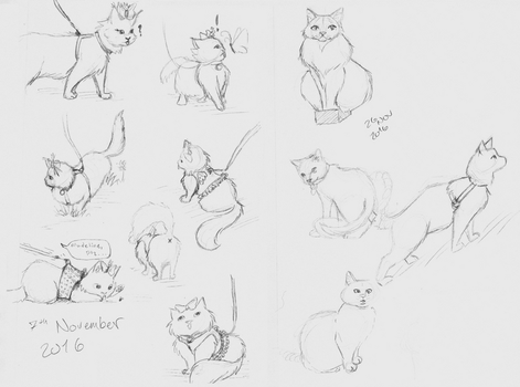 Cat Doods by micamone