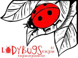 Ladybugs by kalijean