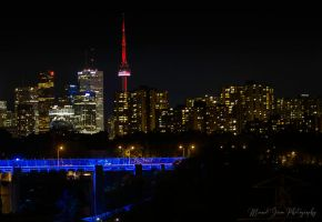 Toronto by Night by grimphotography