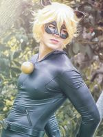Chat Noir by Kiefer-Ramius
