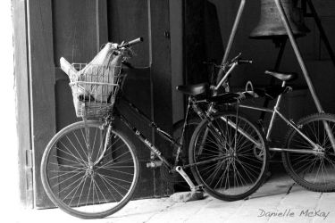 Bicycles by Moonbeam13