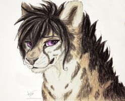 B-day gift for friend by AquarelleWolf