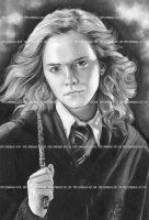 Hermione by lupinemagic