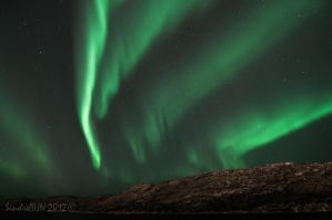 Northern Lights at the Coast by SindreAHN