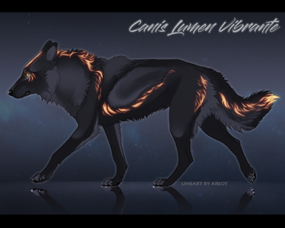 Canis Lumen Adoptable CLOSEd by PrinceAIex
