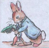 Peter Rabbit by Marvellyous