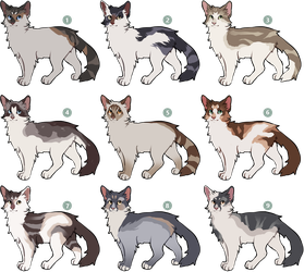 [1 LEFT] Cat Adoptables by nargled
