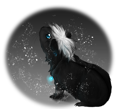 PC .:Vios's first snow:. by WhiteSpiritWolf