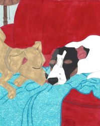 Daisy Comes Home: Puppy Love, A Kiss Goodnight by EllieLieberman