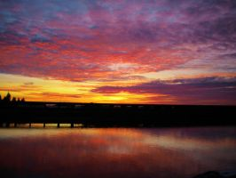 Pink Clouds Sunset on the River by Marilyn958