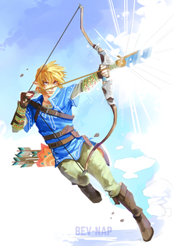 Link: Breath of the Wild by Bev-Nap