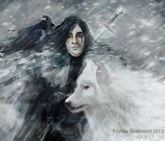 Jon Snow and Ghost by Veronika-Art