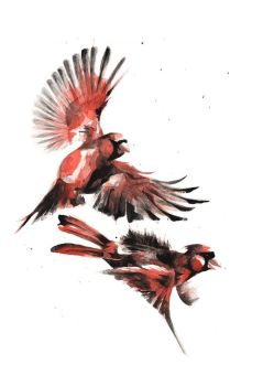 Cardinals Pew Pew Pewing by catgraff