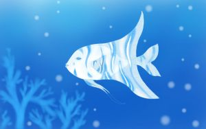Angel fish by karlamell