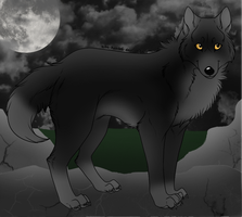 Midnight Wolf by Harryn53012