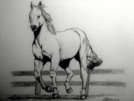 Riding Horse by LarvisNPaint