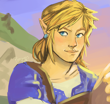 Link by pittssmitts