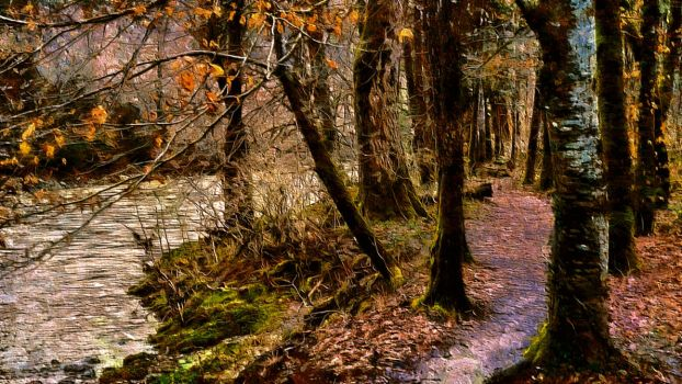 Autumn's Path by montag451