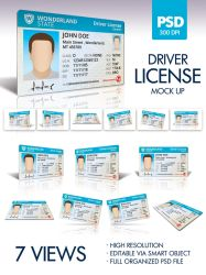 Driver License by doghead