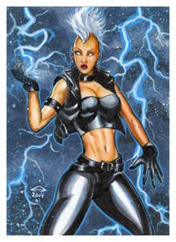 PUNK STORM PERSONAL SKETCH CARD by AHochrein2010