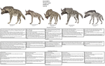 Striped Hyena Subspecies tutorial by Patchi1995