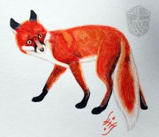 Red Fox in Watercolor by LiHy